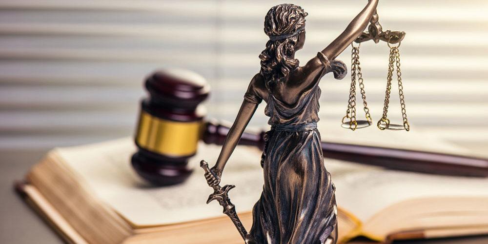 Появление услуг в сфере юриспруденции