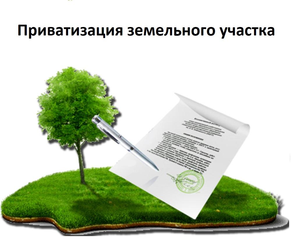 Приватизация земельного участка находящегося в муниципальной собственности